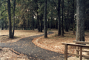Cabot Walking Path